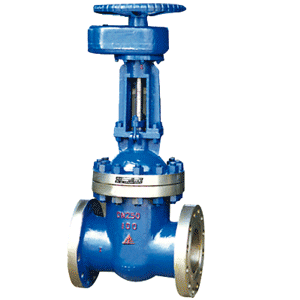 GB Spur Gear Gate Valve,Flanged End,GBlT 9113-2000